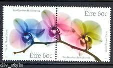 Orchids International Flower Show Dublin 2014 Ireland se-tenant pair mnh #2037-8