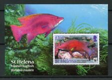 St Helena 2011 MNH Island Hogfish WWF 1v M/S Fish Fishes Marine Stamps