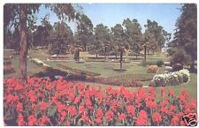 Vintage Chrome Postcard Recreation Park Long Beach CA