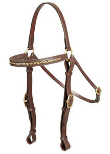 Aintree Ranger Barcoo Brass Bridle Cob or Full