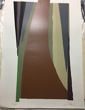 American Artist Larry Zox, Large Signed Lithograph, Limited Edition 31/160