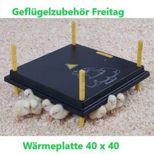 Kükenwärmeplatte 40 x 40 cm Kostenloser Versand