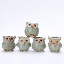 5pcs Small Ceramic Owl Flowerpot Succulent Planter Miniature Decoration for Home