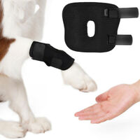 Small Dog Leg Brace Hock Joint Knee Support Rear Therapeutic Pet Leg Protector