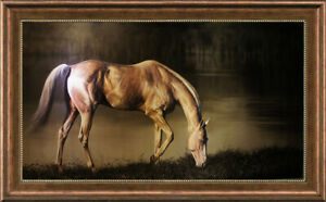 "Original Animals Oil painting art horse on Canvas 30""x50"""
