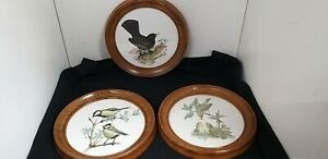 3 x John Murr Circular Bird Prints Blackbird Sparrows & Blue Tits 1958