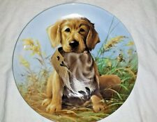Puppy Dog Decor Knowles Collectors Plate Golden Retriever Collectible Decoration