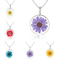 Women Boho Transparent Resin Dried Flower Daisy Pendant Chain Necklace Jewelry