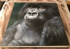 "NEW VERY RARE ORIGINAL JOEL KIRK ""Gorilla"" silverback gorillas OIL PAINTING"