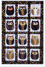 Look Who's Sleeping in My Bed - cute applique Owl quilt PATTERN - Susie Shore
