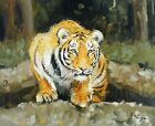 Original Oil painting - wildlife art - tiger portrait - by j payne
