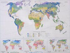 1958 LARGE MAP WORLD VEGETATION TEMPERATURE LAND USE FOREST TROPICAL SHRUB