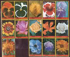 FLOWERS COMPLETE CTO USED SET - AJMAN 1972 1077L
