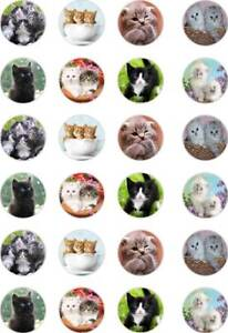 24x PRECUT CUTE KITTENS/CATS/TABBY/PETS/ANIMAL RICE/WAFER PAPER CUP CAKE TOPPERS