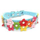 Adjustable Pet Puppy Dog Collar PU Leather Flowers Collar Starp Pet Supplies