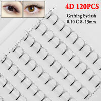 Eye Lashes Extension 0.10 Thickness  C Curl 4D Wave Mink Hair False Eyelashes