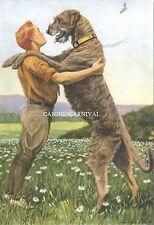 Awesome Vintage Antique Irish Wolfhound Dogs Dog 1919 Rare Art Print