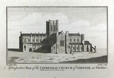 View of Cathedral Church of Chester in Cheshire c1795 Original antique print