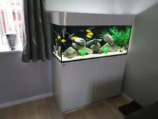 4 ft aquarium fish tank