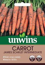 Unwins Pictorial Packet - Carrot James Scarlet Intermediate - 1500 Seeds