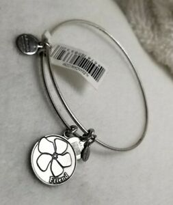 Alex and Ani Love you Friend ❤ Silver Charm Bangle expandable Bracelet  🦃