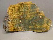 Cherry Creek Jasper Rough Rock Stone Slab Cabbing Cutting Red Creek China #2