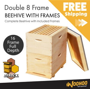 Beehive with frames full depth Bee Hive box 8 frame size NZ pine