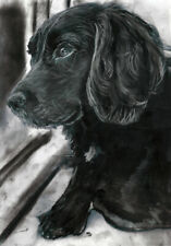 Cocker Spaniel Art Print, Dog Owner Gift, Charcoal Art Signed by Artist A4 A3
