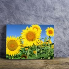 Limited Edition Print Multi-Colour Modern Art Prints