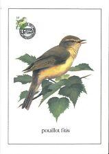 FDC 2623 - Oiseau Buzin sur gravure format A4 !