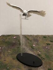 "NECA Harry Potter Hogwarts Pet White Hedwig Snow Owl 3"" 1:12 Action Figure"