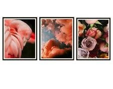 """Set of 3 Flamingo, Pink Clouds and Roses Photo Art Print Posters 12x18"""" Unframed"""