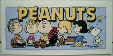 Peanuts Gang Checkbook Register