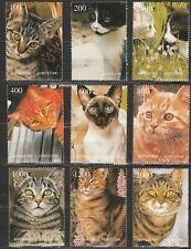 Cats Mint 957