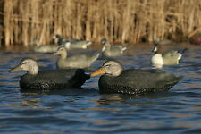 Oversize Black Duck Floating Decoys AV73015 by Greenhead Gear GHG Avery Outdoors