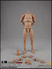 COOMODEL BD002 Male Body Model 1/6 scale Figure Model DOLl  Narrow Shoulders
