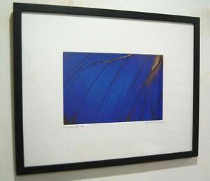 "Art Photograph Blue Butterfly ""Flying Colours"" Russell J Workman 2006 Ltd 2/11"