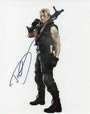 DOLPH LUNDGREN - Signed 10x8 Photograph - FILM - EXPENDABLES