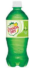 Canada Dry Island Lime Soda 6 Pack
