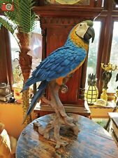 More details for life size & large yellow macaw figure. very realistic & stunning, vivid arts