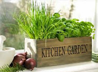 Herb Garden Collection, Small, Heirloom, Organic Seeds, Great for Small Garden