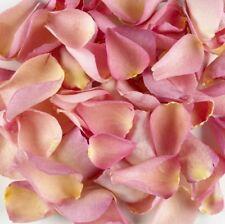 1 Pint of Pink  Freeze Dried Rose Petal Confetti