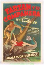 TARZAN AND HIS MATE MOVIE POSTER LB FINE 1934 SPANISH