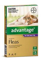 Advantage Flea Control for Cats Over 4kg 6 Tubes