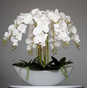 Beautiful XXXXL large latex white orchid arrangement in grey vase💕💕💕