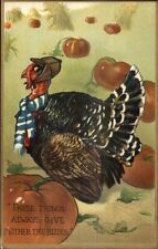 Thanksgiving - TUCK Series #162 Comic Silly Turkeys c1910 Postcard #9 myn