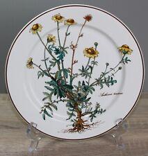 Villeroy & Boch V&B Botanica Speiseteller Teller Ø 26,5 cm MIT WURZELN