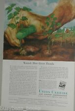 1951 Union Carbide ad, Green Thumb, agriculture