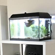 Fish Tank / Aquarium Job Lot ⭐️ Heater + Filter + Thermometer ⭐️ 40L / 40 Litre