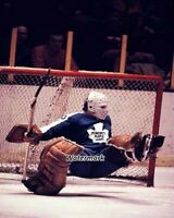 NHL 1970's Bernie Parent Toronto Maple Leafs Color Game Action 8 X 10 Photo Pic